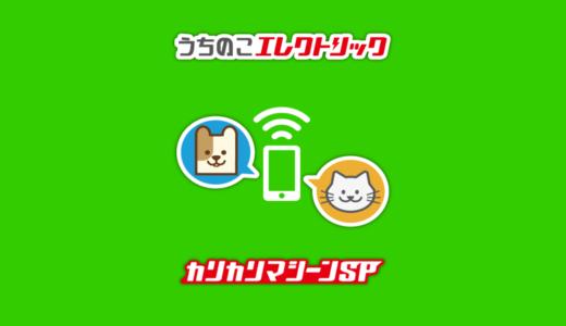 【猫生活おすすめ】自動えさやり器「カリカリマシーンSP」はスマートフォンからカメラ操作もできる!